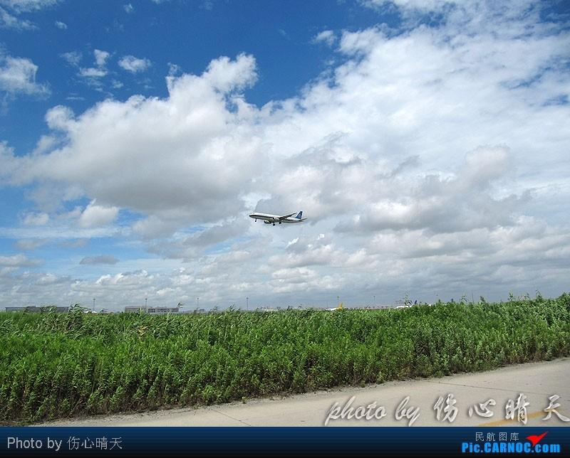[原创]7.24浦东拍机,打到不少新货。飞机自然要拍,但更要拍的是着实不多见的蓝天白云超透景观! AIRBUS A321-200 B-6343 中国上海浦东机场