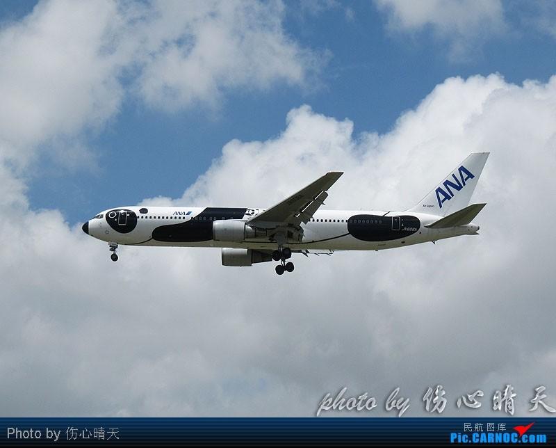 Re:[原创]7.24浦东拍机,打到不少新货。飞机自然要拍,但更要拍的是着实不多见的蓝天白云超透景观! BOEING 747-400 JA606A 中国上海浦东机场