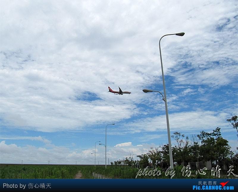 Re:[原创]7.24浦东拍机,打到不少新货。飞机自然要拍,但更要拍的是着实不多见的蓝天白云超透景观! BOEING 737-800  中国上海浦东机场