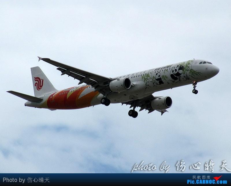 Re:[原创]7.24浦东拍机,打到不少新货。飞机自然要拍,但更要拍的是着实不多见的蓝天白云超透景观! AIRBUS A321-200 B-6365 中国上海浦东机场