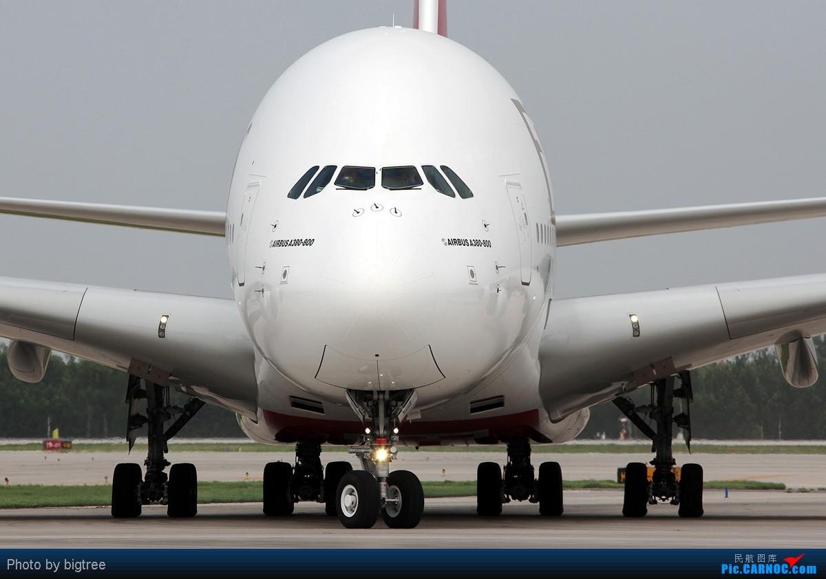 Re:[原创]好久好久不上资源网了,发点阿联酋380首航北京的片子,从机外到机内,还有传说中可以洗澡的卫生间 AIRBUS A380 A6-EDK 中国北京首都机场