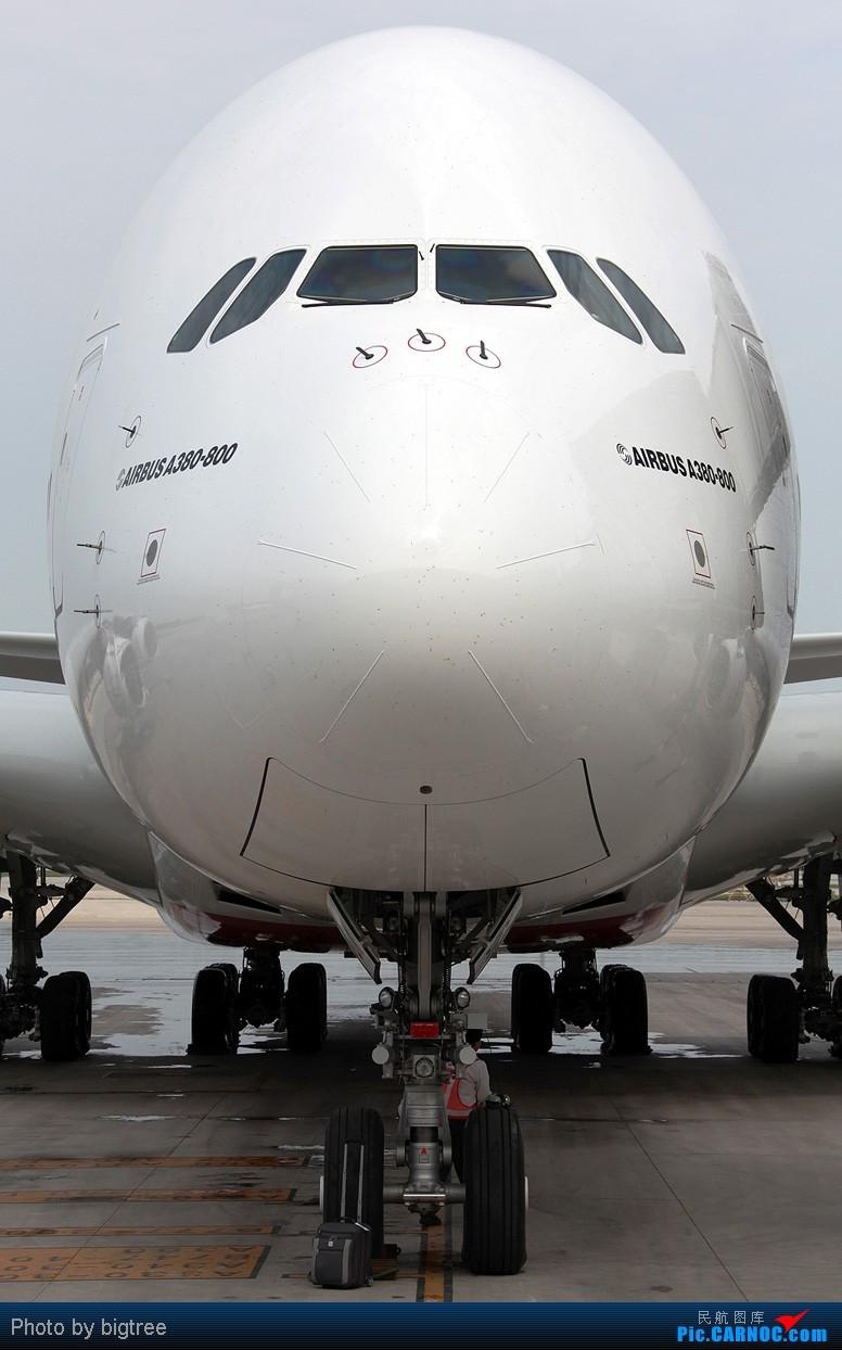 Re:[原创]好久好久不上资源网了,发点阿联酋380首航北京的片子,从机外到机内,还有传说中可以洗澡的卫生间 AIRBUS A380 A6-EDK PEK