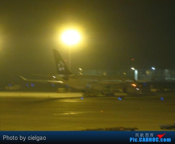 Re:[原创]Bonn之行,FRA真是繁忙啊 AIRBUS A330-200  PEK