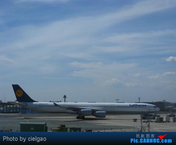 Re:[原创]Bonn之行,FRA真是繁忙啊 AIRBUS A340-600 D-AIHS FRA