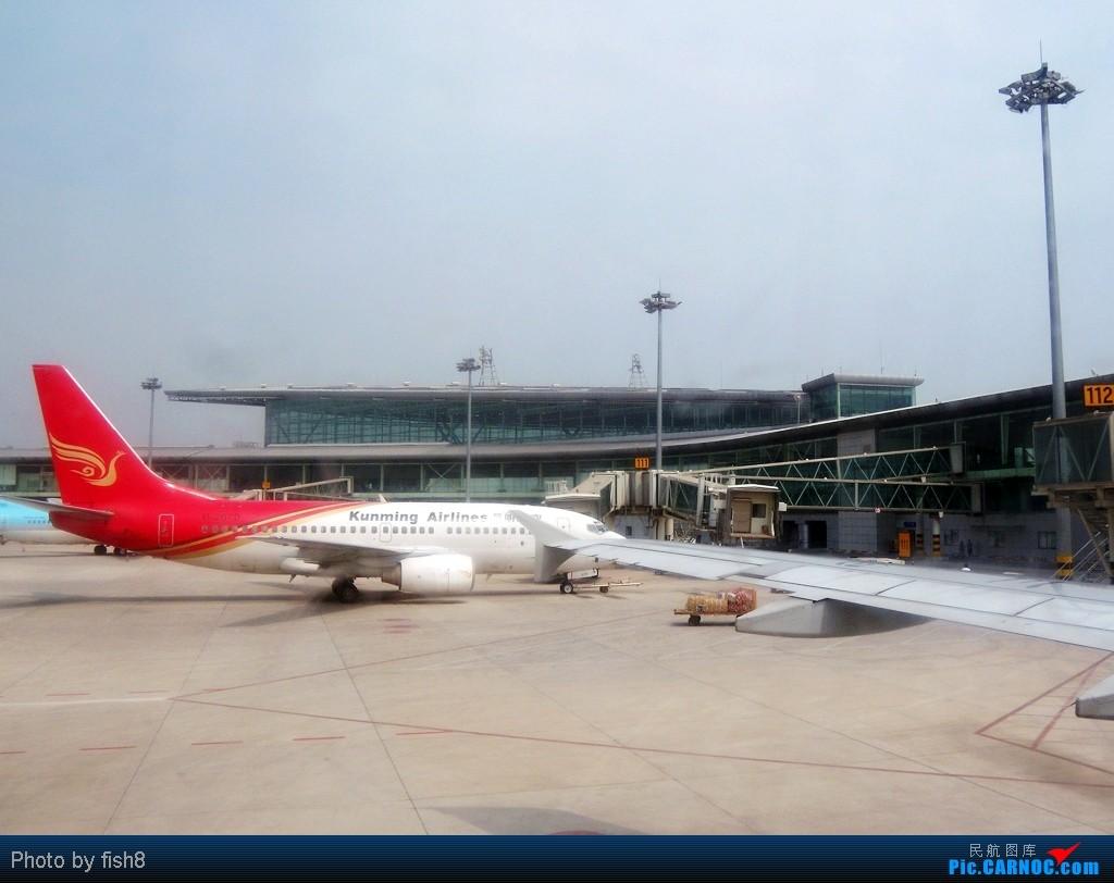Re:[原创]【长春飞友会】fish8坐飞机(15)二次邂逅TSN和川航的B-6185 TSN-CGQ BOEING 737-700 B-2679 中国天津滨海机场