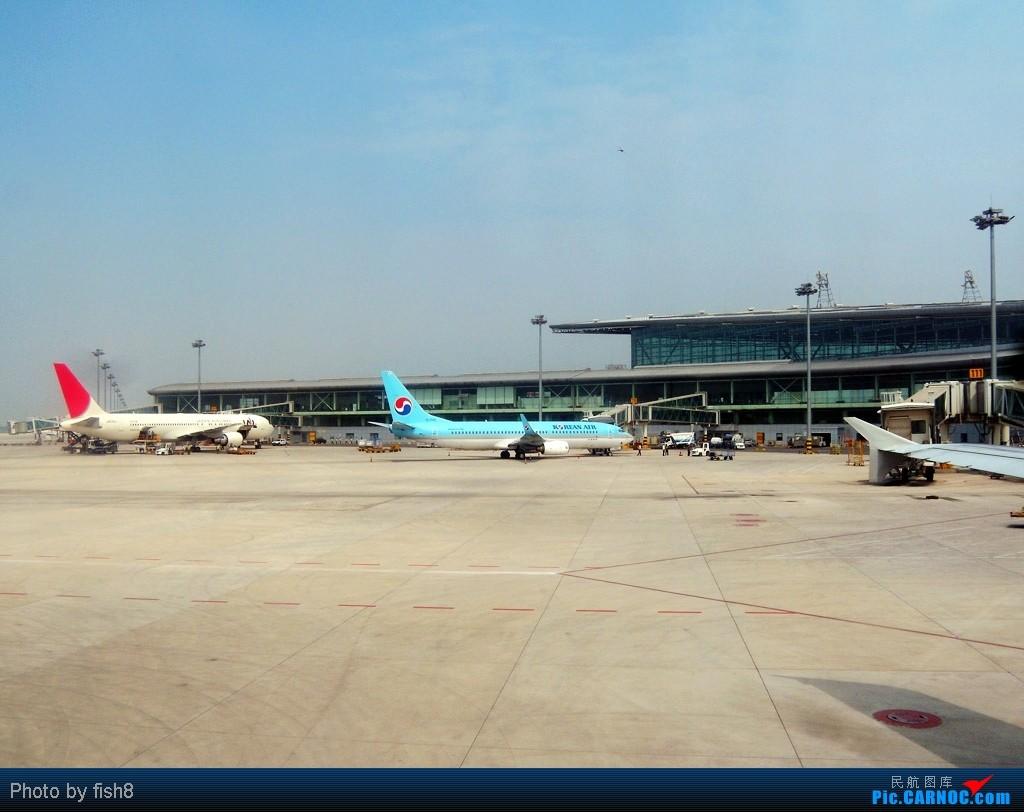 Re:[原创]【长春飞友会】fish8坐飞机(15)二次邂逅TSN和川航的B-6185 TSN-CGQ    中国天津滨海机场