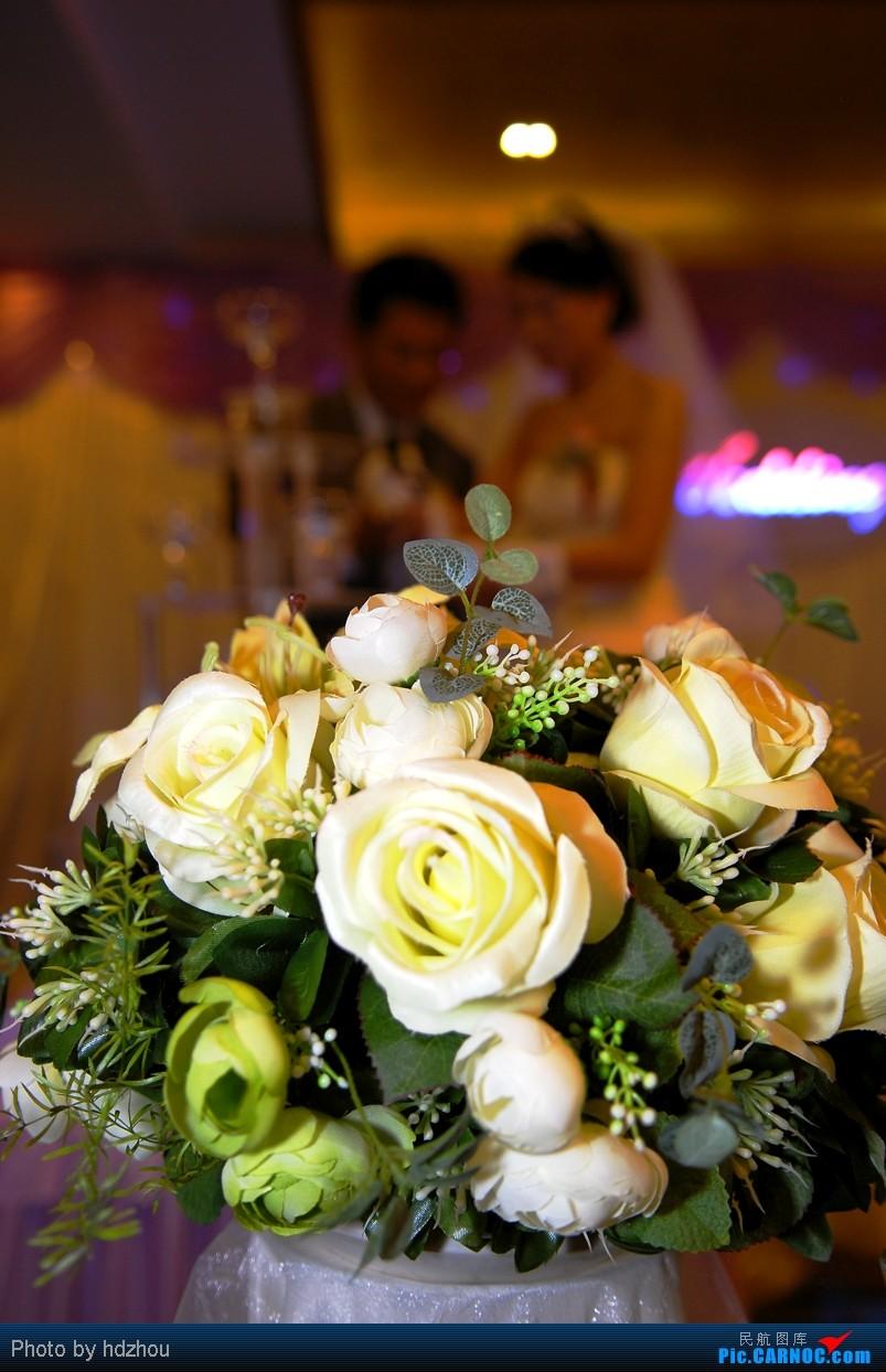 [原创][CASG]威猛大婚,发图恭喜!     飞友