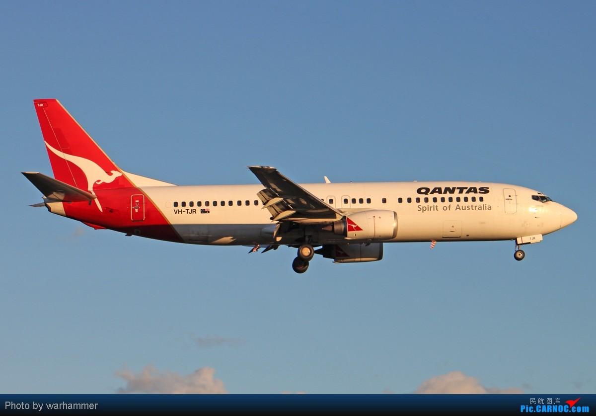 Re:[原创][SYD&TSV联合公报] 热烈庆祝kmwangchen同学名草有主 QFA阖家偕同神秘嘉宾前来祝福 BOEING 737-400 VH-TJR 澳大利亚悉尼金斯福德·史密斯机场