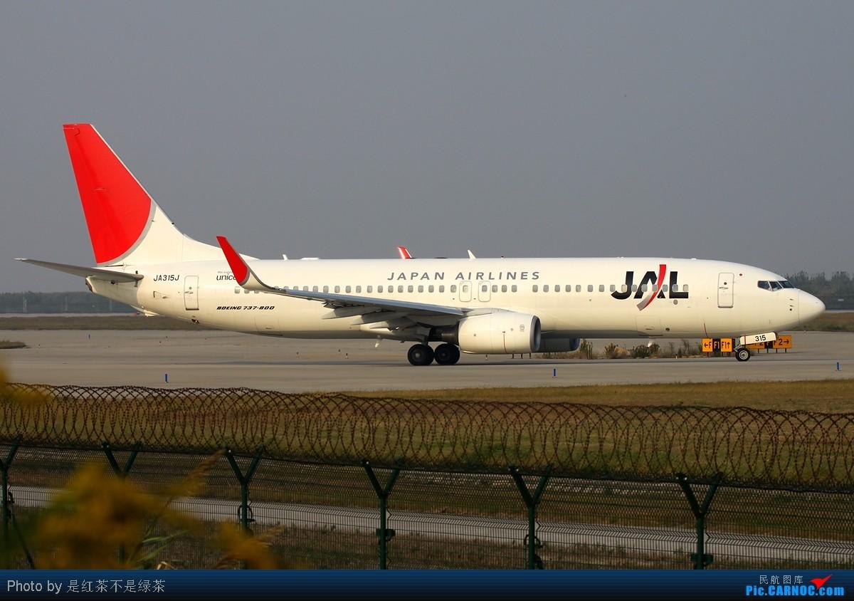 Re:[原创]【红茶拍机】自从国庆新加坡归来后就没有拍机,趁着本月最后一天去浦东扫荡,虽然很辛苦,但收获颇丰! BOEING 737-800 JA315J 中国上海浦东机场