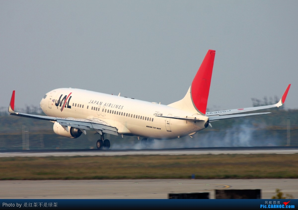 Re:[原创]【红茶拍机】自从国庆新加坡归来后就没有拍机,趁着本月最后一天去浦东扫荡,虽然很辛苦,但收获颇丰! BOEING 737-800 JA305J 中国上海浦东机场