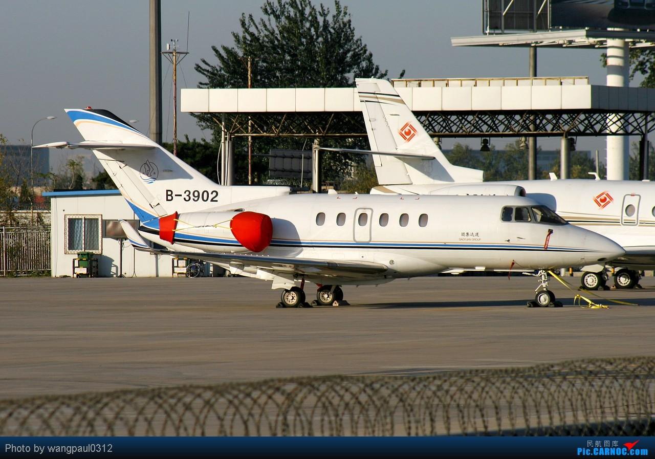 Re:[原创]意共出身的现任意大利总统乔治·纳波利塔诺访华砖机 HAWKER 850XP B-3902 北京首都国际机场