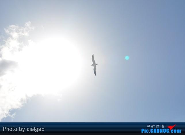Re:[原创]我的首次环球飞行,星空联盟环球套票,PEK-SFO-AUS-IAH-CUN-CLT-FRA-NRT-PEK,旅程进行中,敬请持续支持!11月30日更新