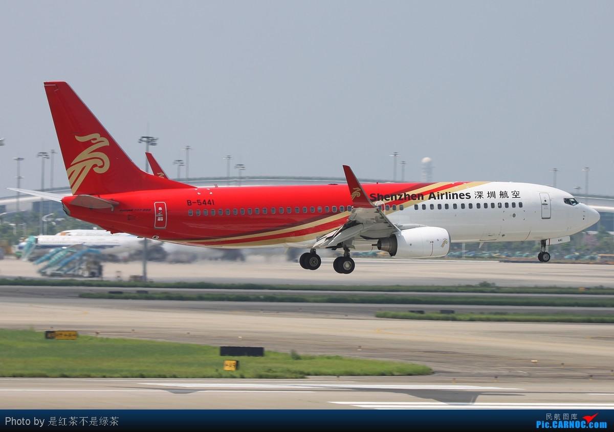 [原创]【红茶拍机】偶尔流窜一次CAN,深航的波音与空客! BOEING 737-800 B-5441 中国广州白云机场