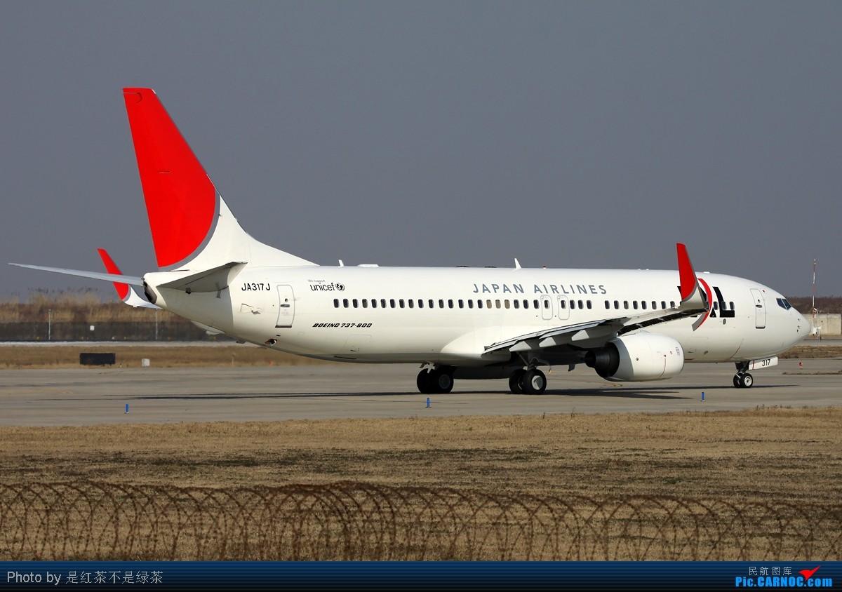 Re:[原创]【红茶拍机】2011年新年第一天PVG拍机,各种角度,全部外航,最后一张准外航! BOEING 737-800 JA317J 中国上海浦东机场