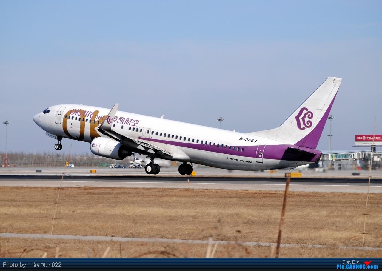 Re:[原创]**TSN**TSN**以几个不同的角度  证明在万家欢乐时我的存在 BOEING 737-800 B-2863 中国天津滨海机场