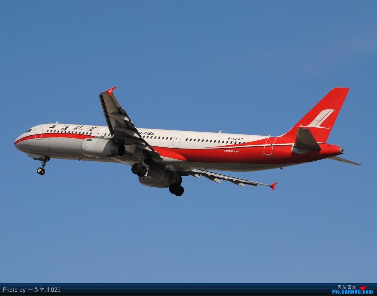 Re:[原创]**TSN**TSN**以几个不同的角度  证明在万家欢乐时我的存在 AIRBUS A321-200 B-6643 中国天津滨海机场