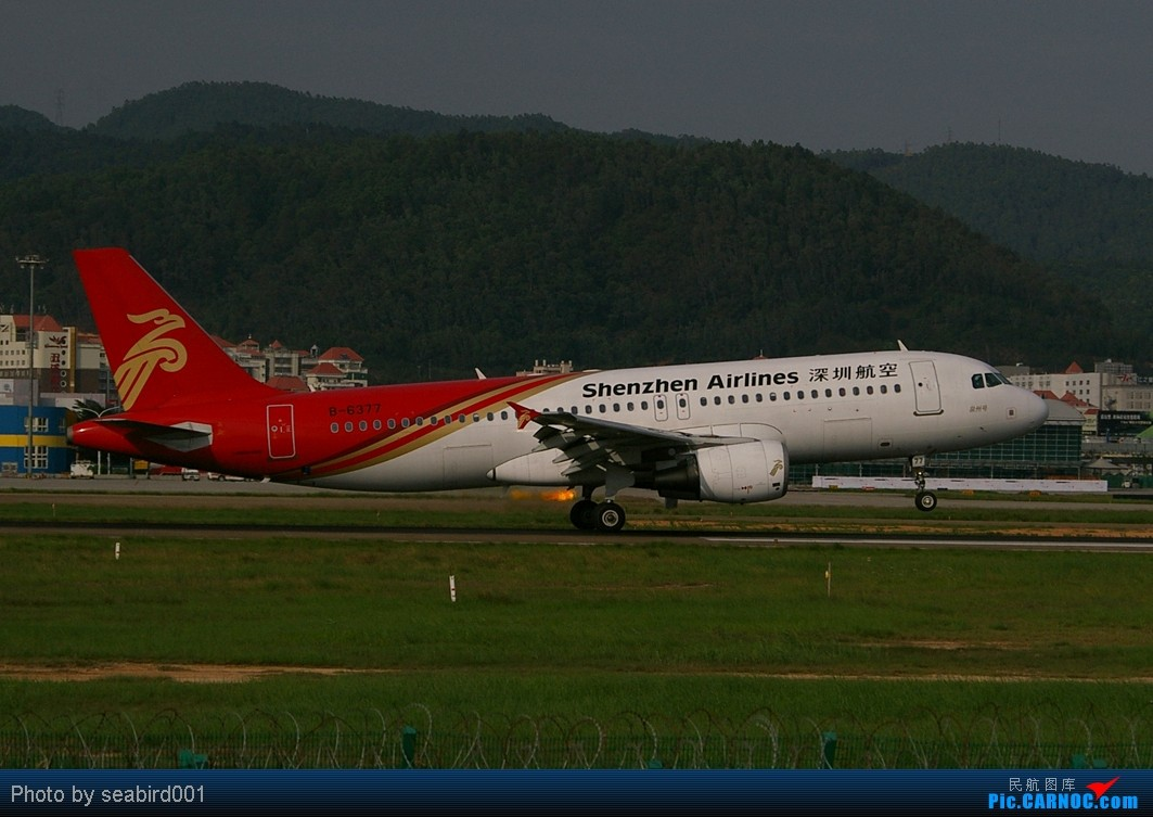 [原创](深圳飞友会)喷火娃 AIRBUS A320-200 B-6377 中国深圳宝安机场