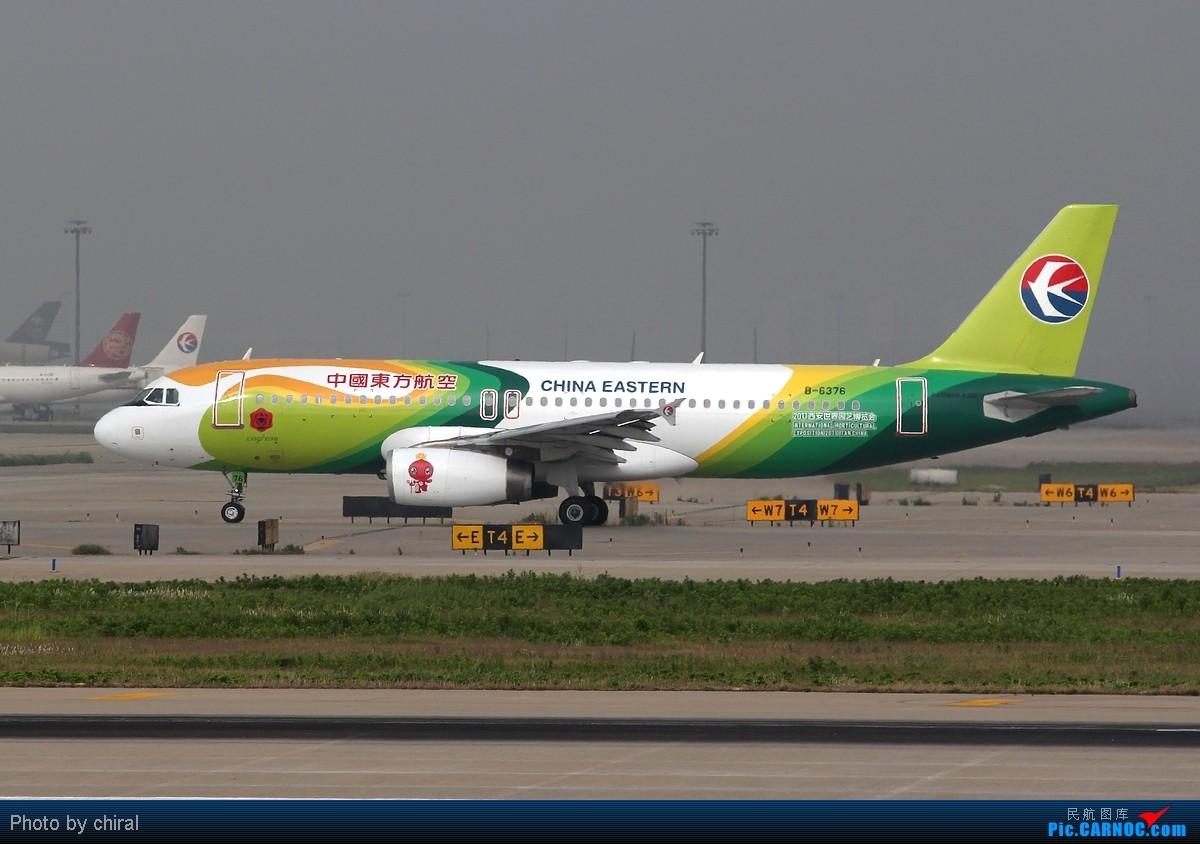 [原创]【Chiral】521的pvg,半天九只大彩绘,应该算及格了吧,完 AIRBUS A320-200 B-6376 中国上海浦东机场