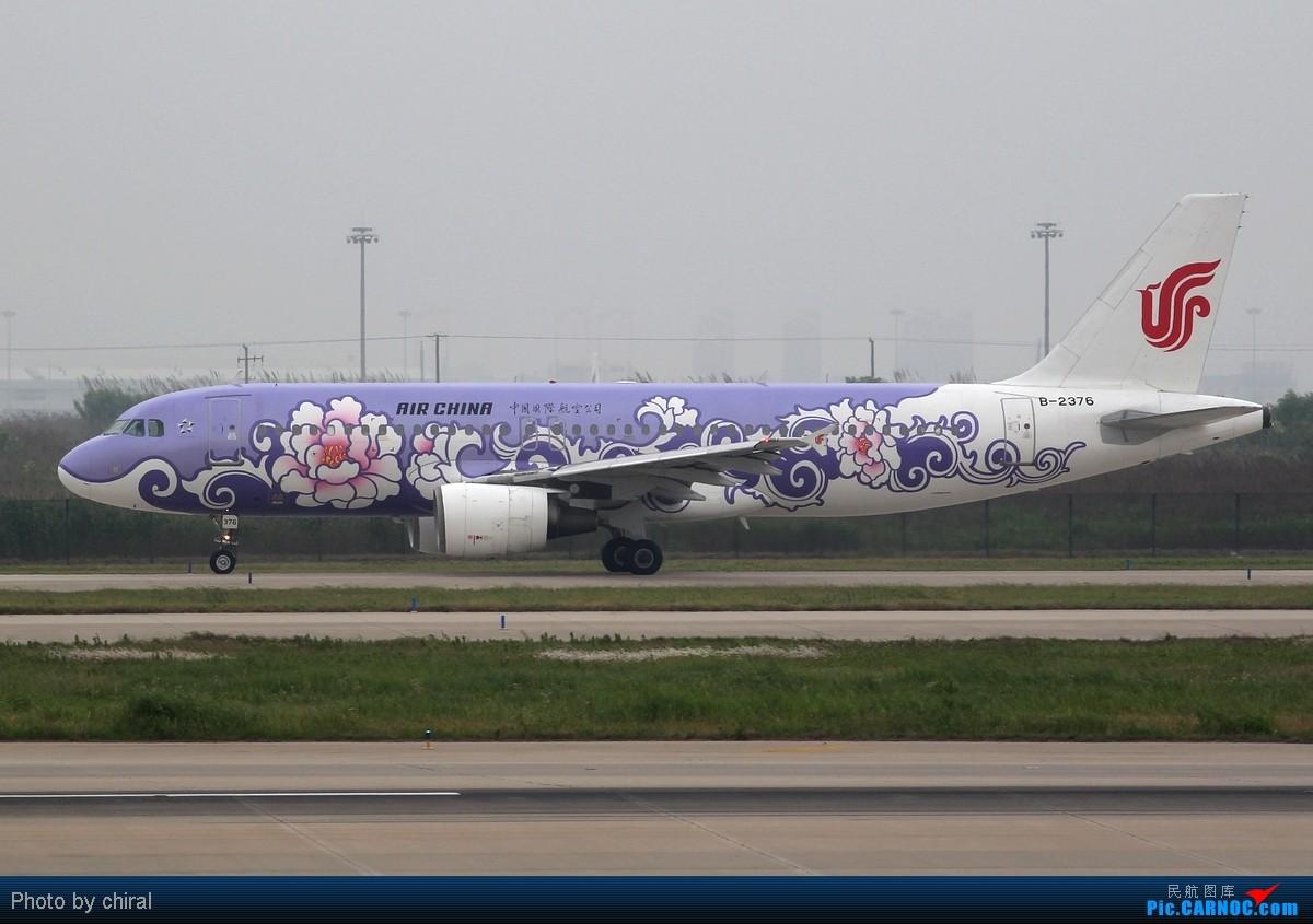 Re:[原创]521的pvg,半天九只大彩绘,应该算及格了吧 AIRBUS A320-200 B-2376 中国上海浦东机场