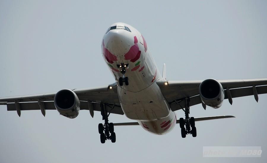 [原创][DLC内场] 广东来人---DLC拍机 AIRBUS A330-300 B-6129 中国大连周水子机场