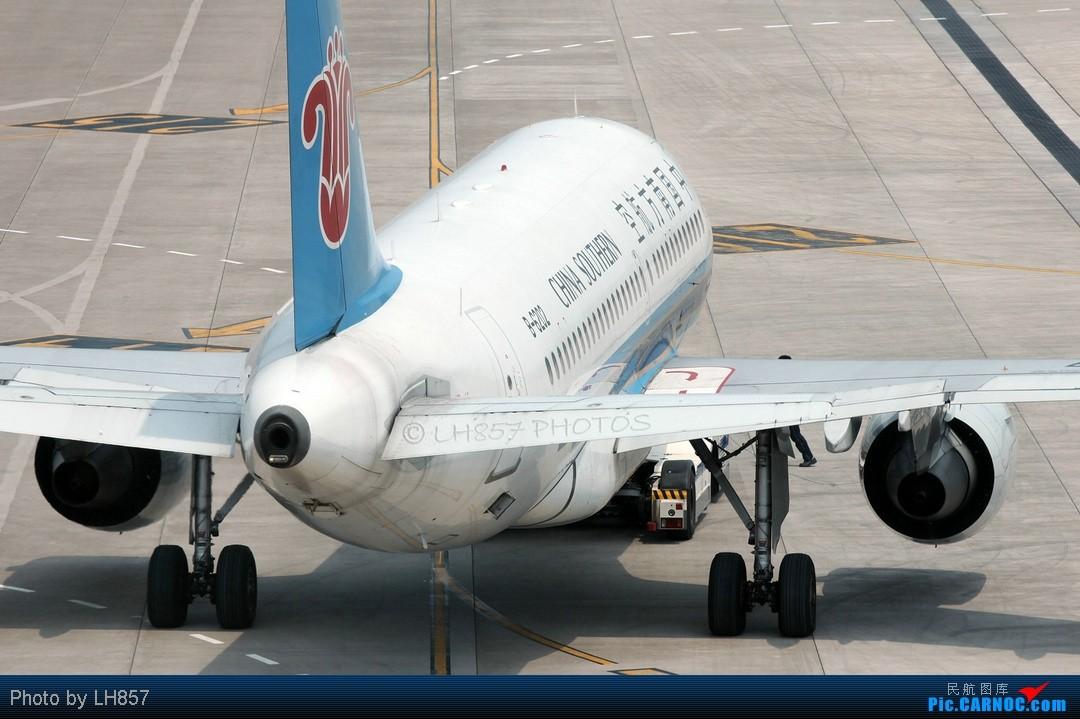 Re:[原创]7月重庆拍机帖,藏航319,长荣MD90~~多图杀猫,慎入(65P) AIRBUS A319-100 B-6202 中国重庆江北机场