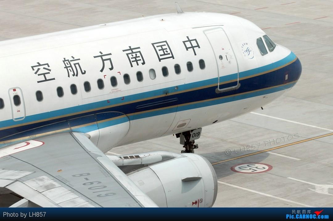 Re:[原创]7月重庆拍机帖,藏航319,长荣MD90~~多图杀猫,慎入(65P) AIRBUS A319-100 B-6019 中国重庆江北机场