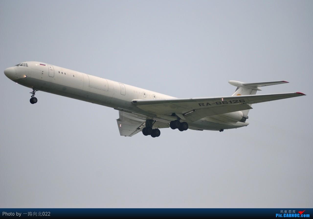 [原创]**TSN**TSN**第一次拍到活着的那个它    中国天津滨海机场