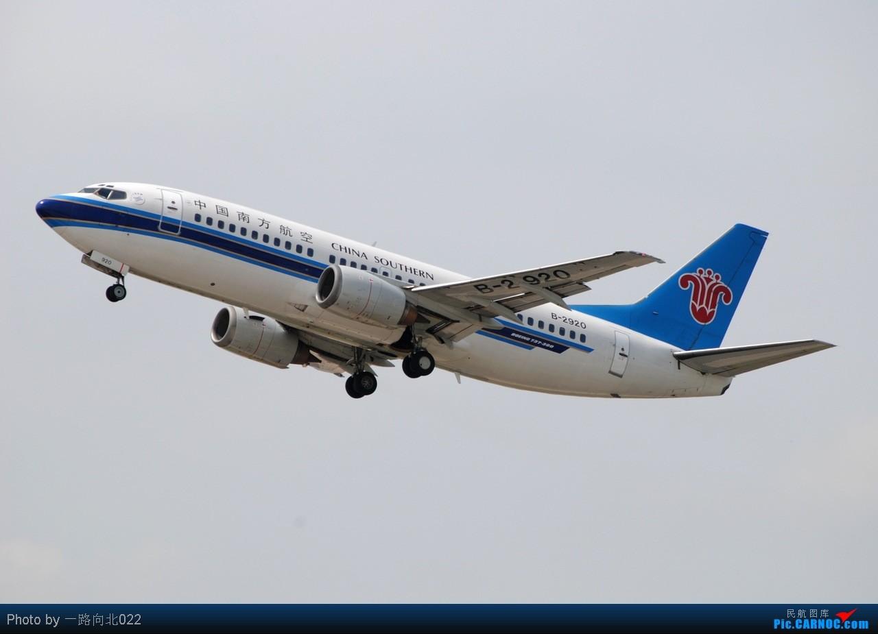 [原创]**TSN**TSN**都去直博会了 坚守阵地 BOEING 737-300 B-2920 中国天津滨海机场