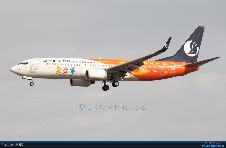 Re:[原创]再次光临PEK,八卦台各种给力和不给力,凉爽的T3大桥 BOEING 737-800 B-5590 中国北京首都机场