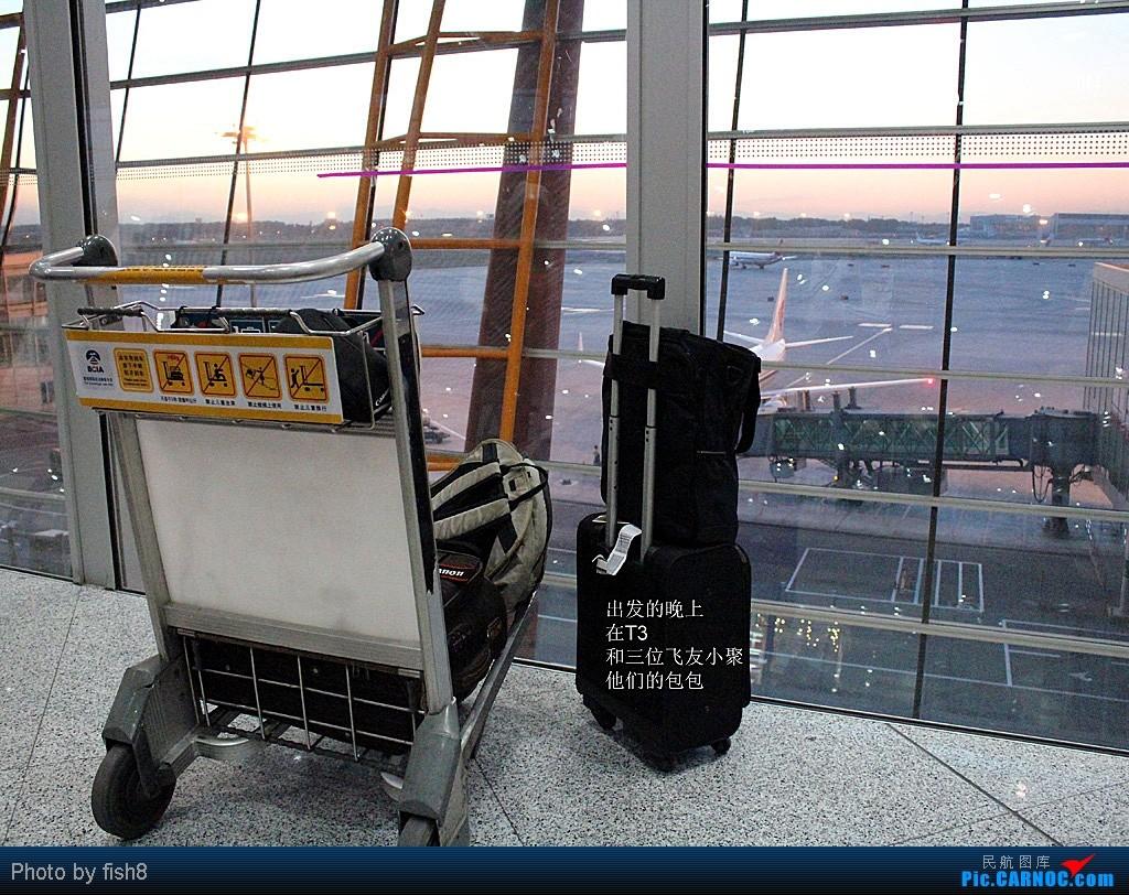 Re:[原创]【长春飞友会】fish8(20):初乘大韩去清迈 泰东方到曼谷 PEK-ICN-CNX CNX-DMK    中国北京首都机场