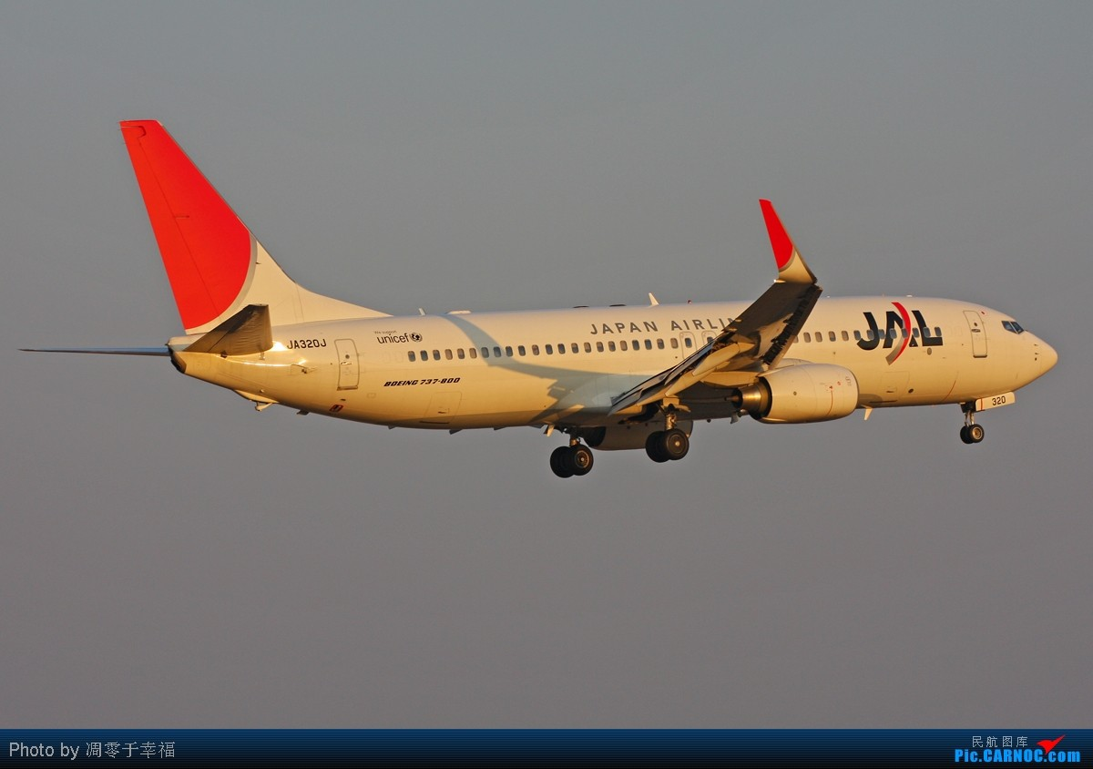 Re:[原创]【BLDDQ】有打酱油的地方就有737,成田也不例外.. 737-800 JA320J 日本东京成田机场