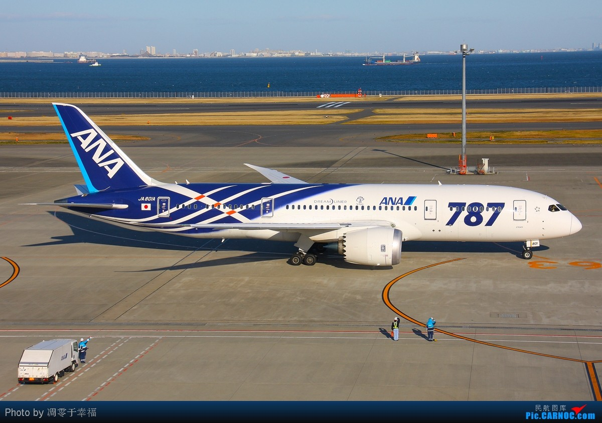 Re:[原创]【BLDDQ】迎接2012--ANA家的787都被收入囊中.祝大家新年快乐 BOEING 787 JA801A 日本东京成田机场