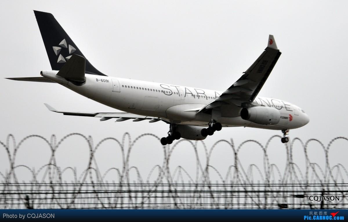 Re:[原创]【CKG重庆飞友会】-寒风中拍机第二弹-亮点在大星星。转战三个机位 AIRBUS A330-200 B-6091 中国重庆江北机场