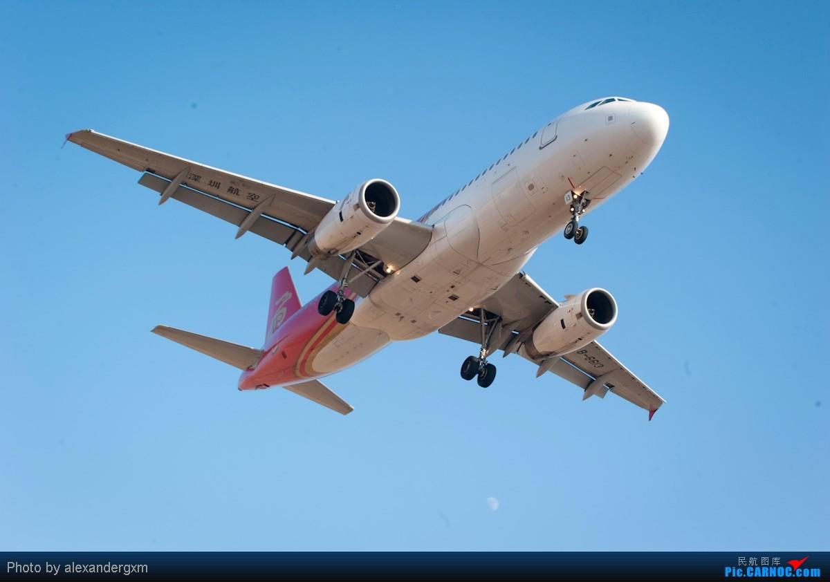 Re:[原创]第一次拍飞机~SHE-沈阳桃仙机场 AIRBUS A320-200 B-6613 中国沈阳桃仙机场