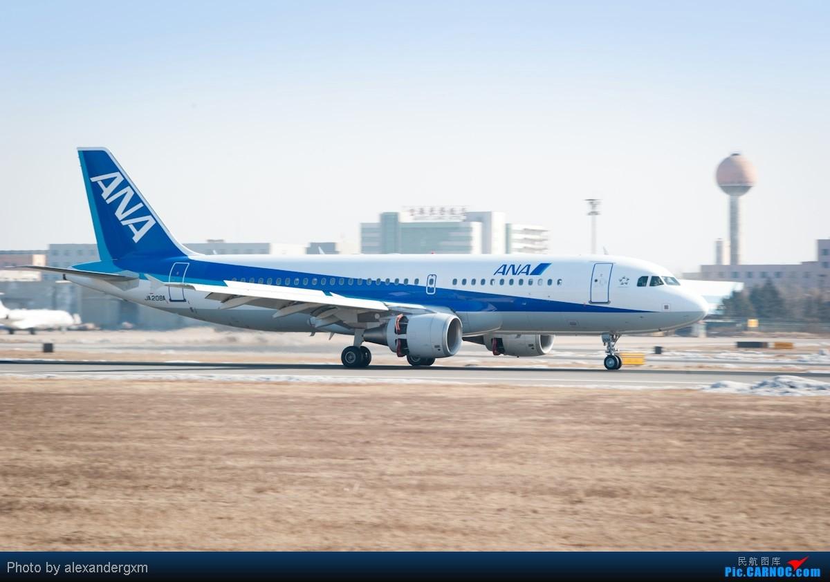 Re:[原创]【SHE】上午桃仙机场随拍~757斯基等~ AIRBUS A320 JA208A 中国沈阳桃仙机场