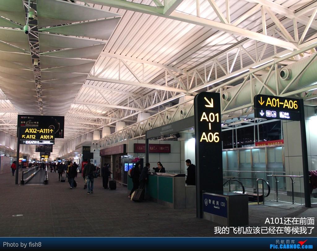 Re:[原创]【长春飞友会】fish8(22):22小时来回 初乘KQ PG TG商务 CAN-BKK-CNX-BKK-CAN    中国广州白云机场