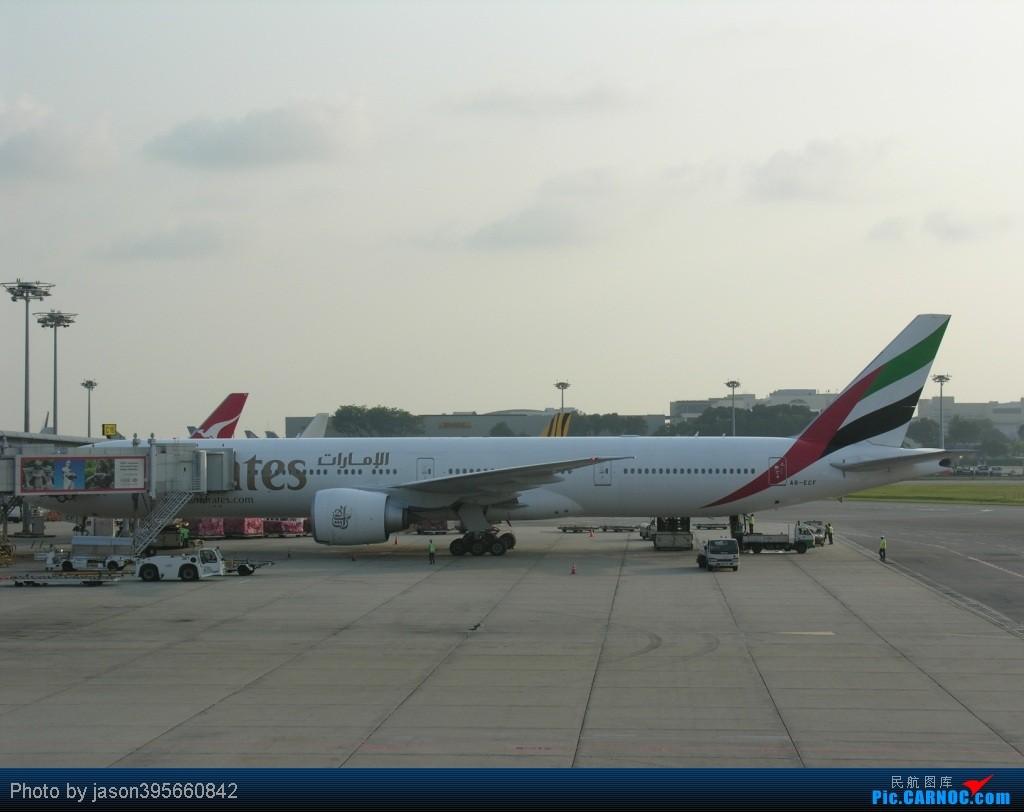 Re:[原创]SIN-HKG  新马交流营完结~回国~ BOEING 777-300 A6-ECF 新加坡樟宜机场