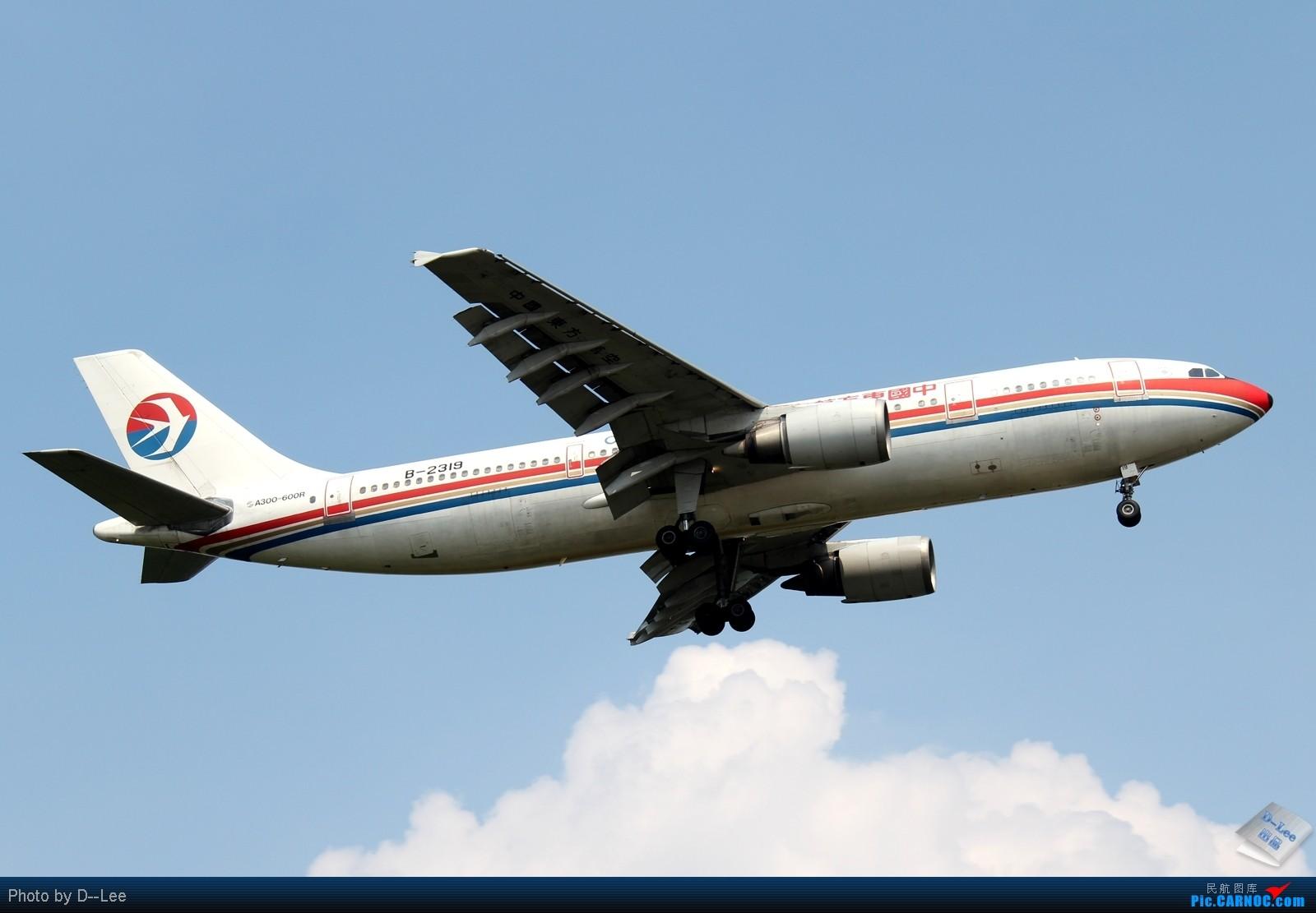 Re:[原创]【广州,你好】-南航SKY TEAM332,港龙333,泰航大星星333外加拍少见少东航AB6全程1600大图放送 AIRBUS A300-B4-600R B-2319 中国广州白云机场