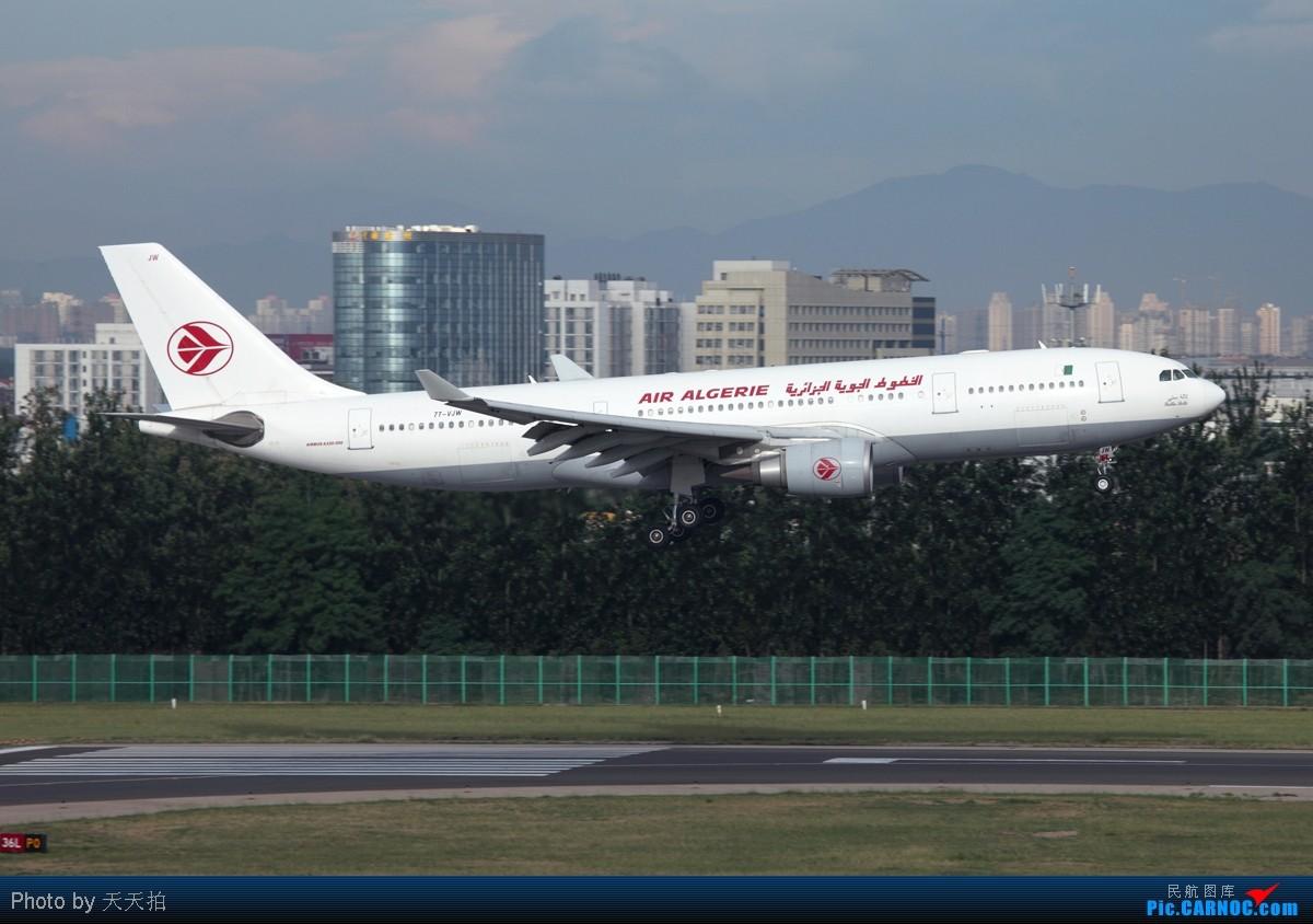 [原创]全国飞友们明天别忘了跟自己的爸爸说声节日快乐! AIRBUS A330-200 7T-VJW 中国北京首都机场