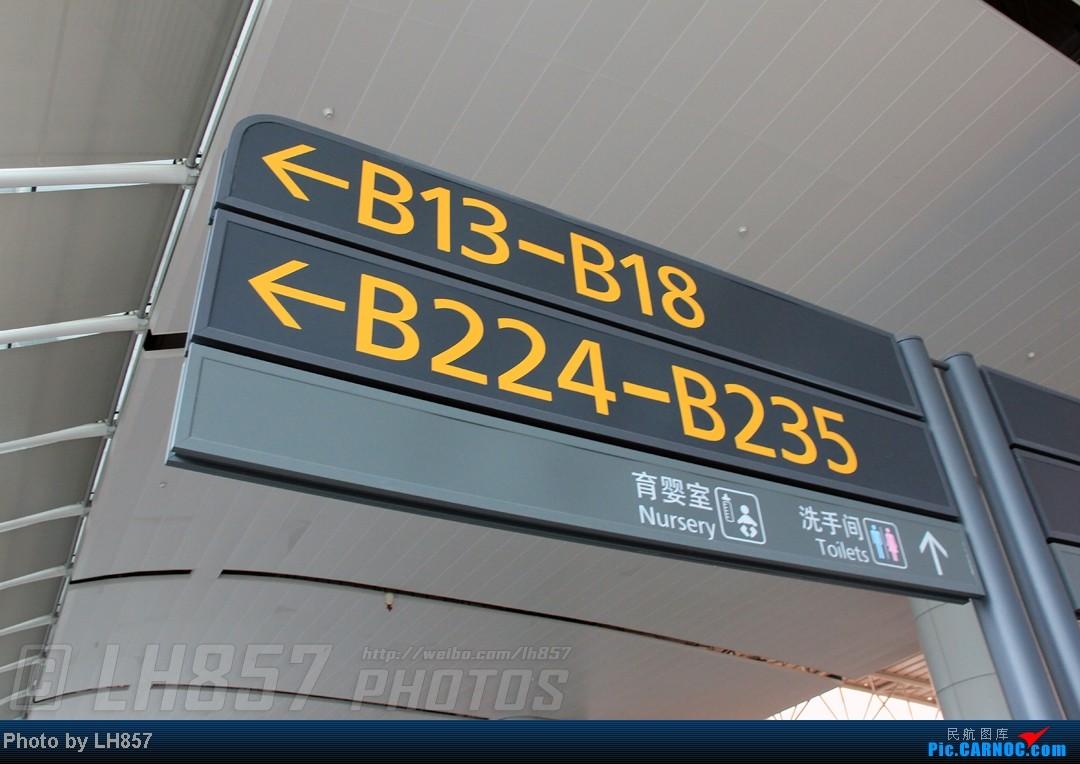 Re:[原创]22天的漂泊,菜航三胖初体验,见证了巫家坝与长水,PEK-CAN-KMG-CKG-SJW四段大暴走(二)    中国广州白云机场
