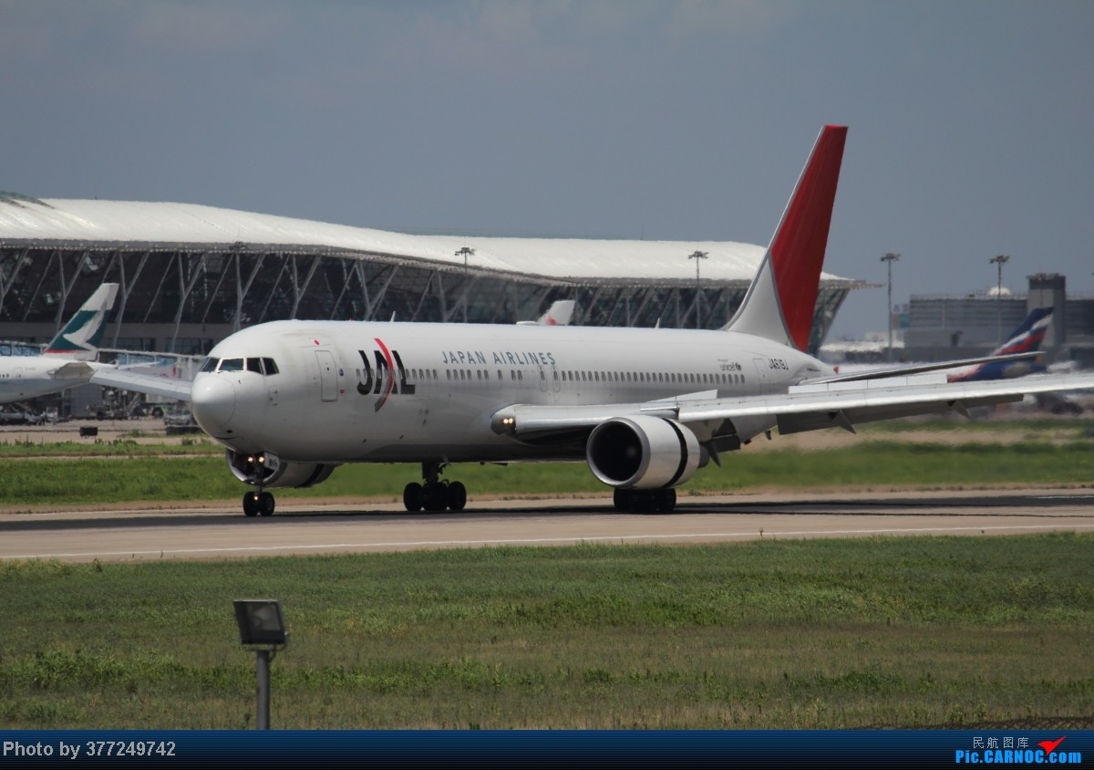 Re:[原创]趁着最后的好天气去趟PVG,烂技术请多包涵。西园会、世博320、长荣744、AC763、UA744。回去磁悬浮飙到430KM一刚。 BOEING 767-300 JA619J 中国上海浦东机场