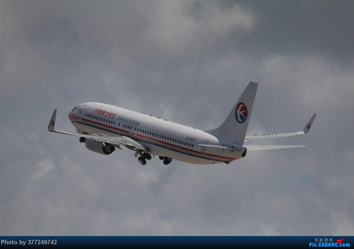 Re:[原创]趁着最后的好天气去趟PVG,烂技术请多包涵。西园会、世博320、长荣744、AC763、UA744。回去磁悬浮飙到430KM一刚。 BOEING 737-800 B-5517 中国上海浦东机场