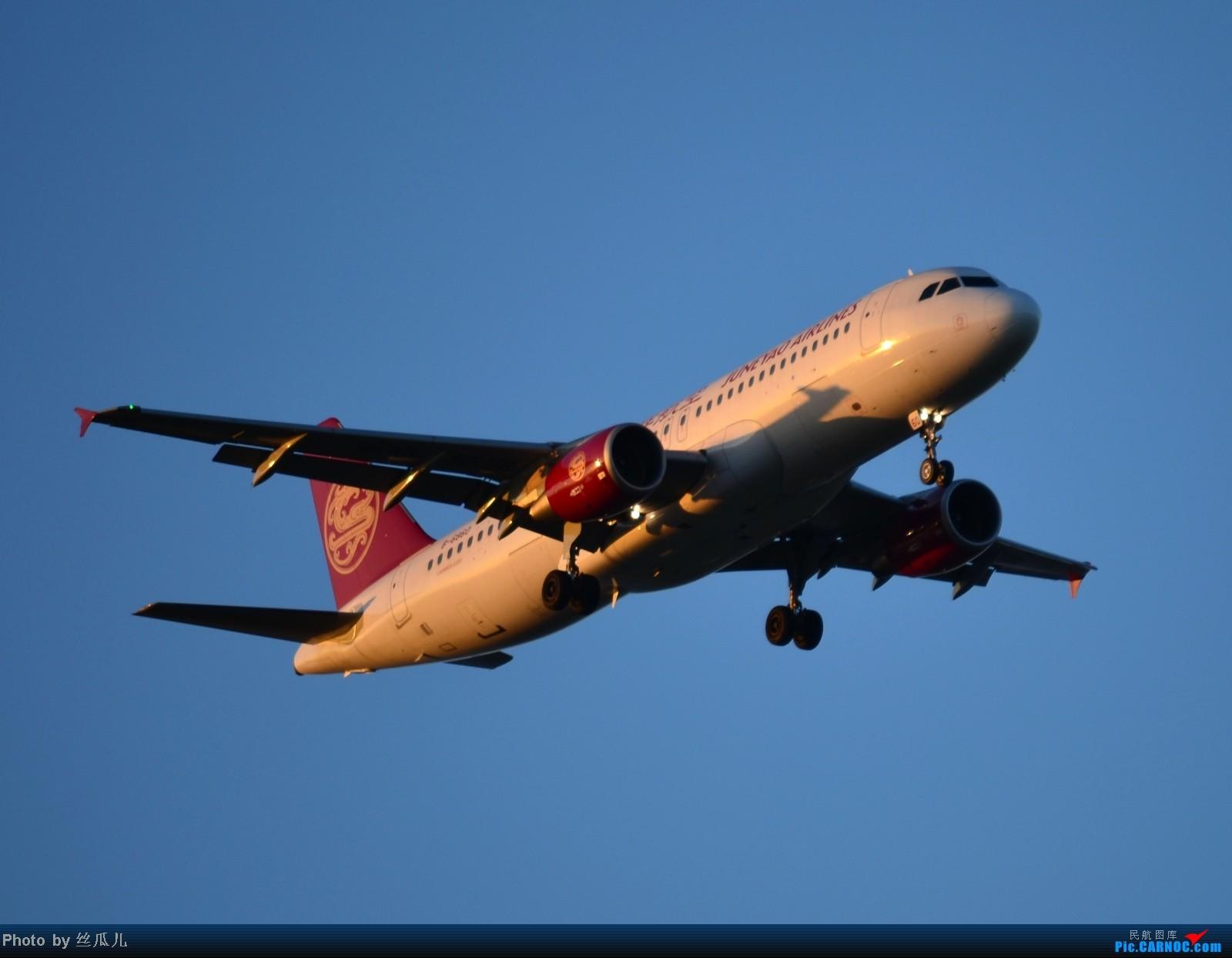 Re:[原创]浦东机场手痒痒了 AIRBUS A320-200 B-6860 中国上海浦东机场