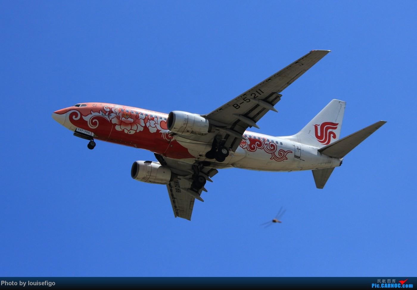 两张难得一见  绝对不一样的牡丹双飞!粉牡丹与红牡丹!  :) BOEING 737-700 B-5211 北京首都国际机场