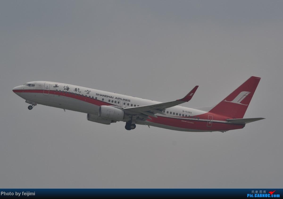 Re:[原创]我的暑假最后一次拍飞机,惊喜不断,RP超级大爆发!!哈哈 BOEING 737-800 B-5393 中国烟台莱山机场