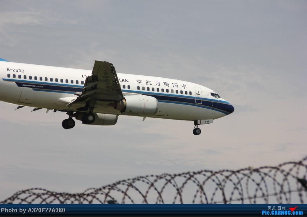 Re:[原创]{LEO拍机}新手冒着烈日酷暑,奋战在CTU!没有功劳也有苦劳吧!走过路过不要错过!欢迎各位大侠砸飞机和指点!另附有奖问答答对10个小飞机送上 BOEING 737-300 B-2539 中国成都双流机场