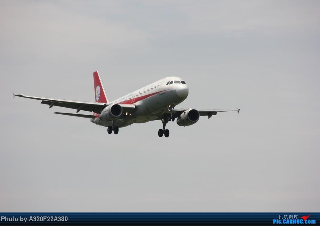 Re:[原创]{LEO拍机}新手冒着烈日酷暑,奋战在CTU!没有功劳也有苦劳吧!走过路过不要错过!欢迎各位大侠砸飞机和指点!另附有奖问答答对10个小飞机送上 AIRBUS A320-200 B-6295 中国成都双流机场