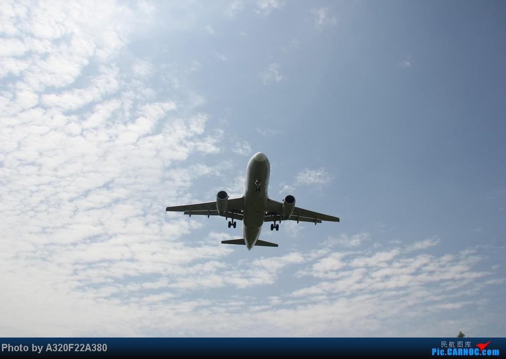 Re:[原创]{LEO拍机}新手冒着烈日酷暑,奋战在CTU!没有功劳也有苦劳吧!走过路过不要错过!欢迎各位大侠砸飞机和指点!另附有奖问答答对10个小飞机送上 AIRBUS A319-100 B-2300 中国成都双流机场