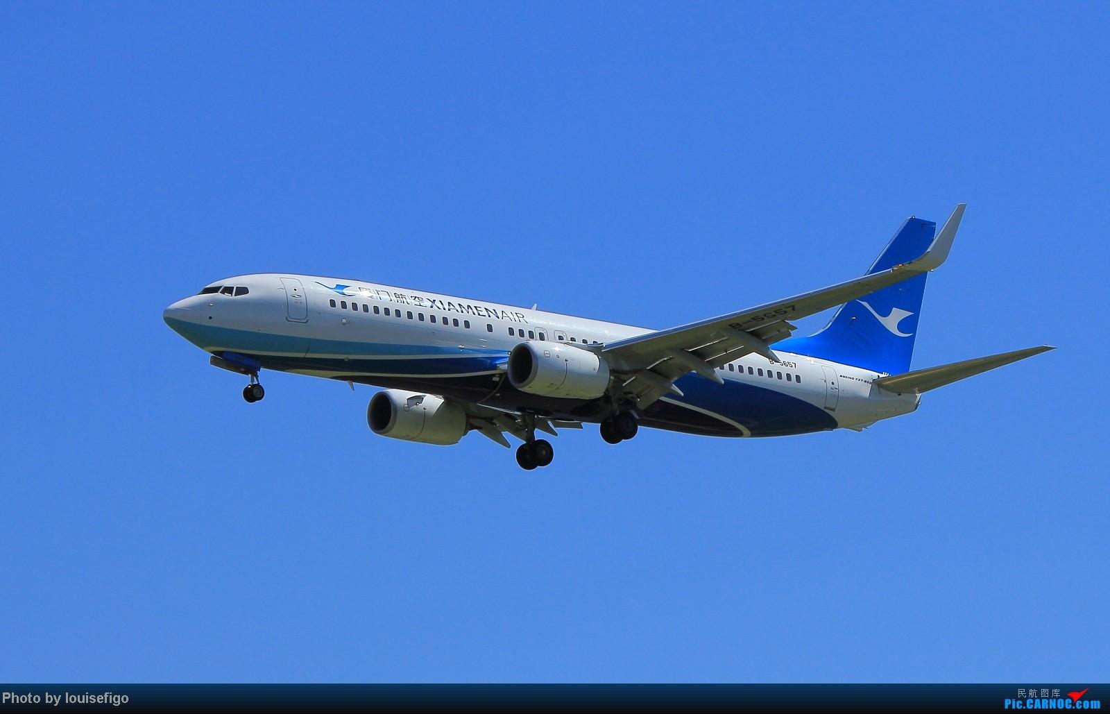 [原创]秋高气爽得蓝天,厦门天鹅小清新!~~~~~~新装厦航飞在PEK! BOEING 737-800 B-5657 北京首都国际机场
