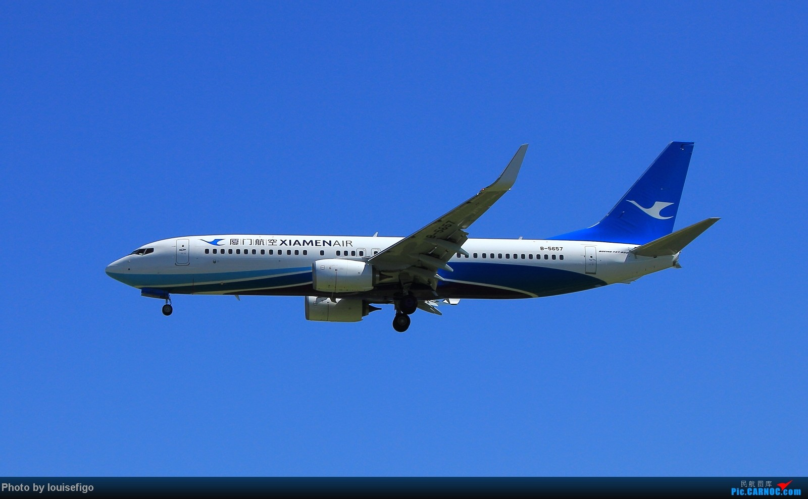 Re:[原创]秋高气爽得蓝天,厦门天鹅小清新!~~~~~~新装厦航飞在PEK! BOEING 737-800 B-5657 北京首都国际机场